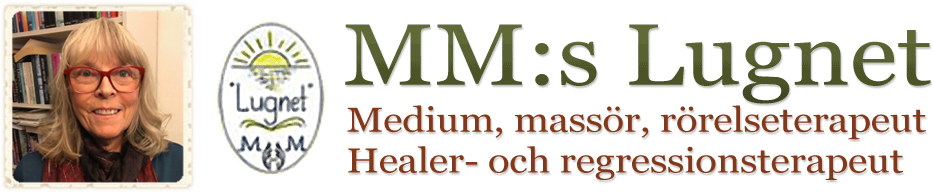 MM:s Lugnet